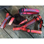 "The 1"" Width Personalized Dog Harness"