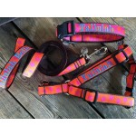 "The 1"" Width Personalized Harness, Lead, Collar Set"