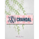Wedding Reception Sign Decorations, Bride and Groom Monogram with Last Name Sign, Wedding Date, 10x30 Canvas and Print (3906)