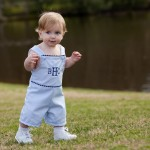 Blue/Navy Pinstripe Shortall